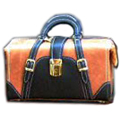 Heritage Black and Tan Bag